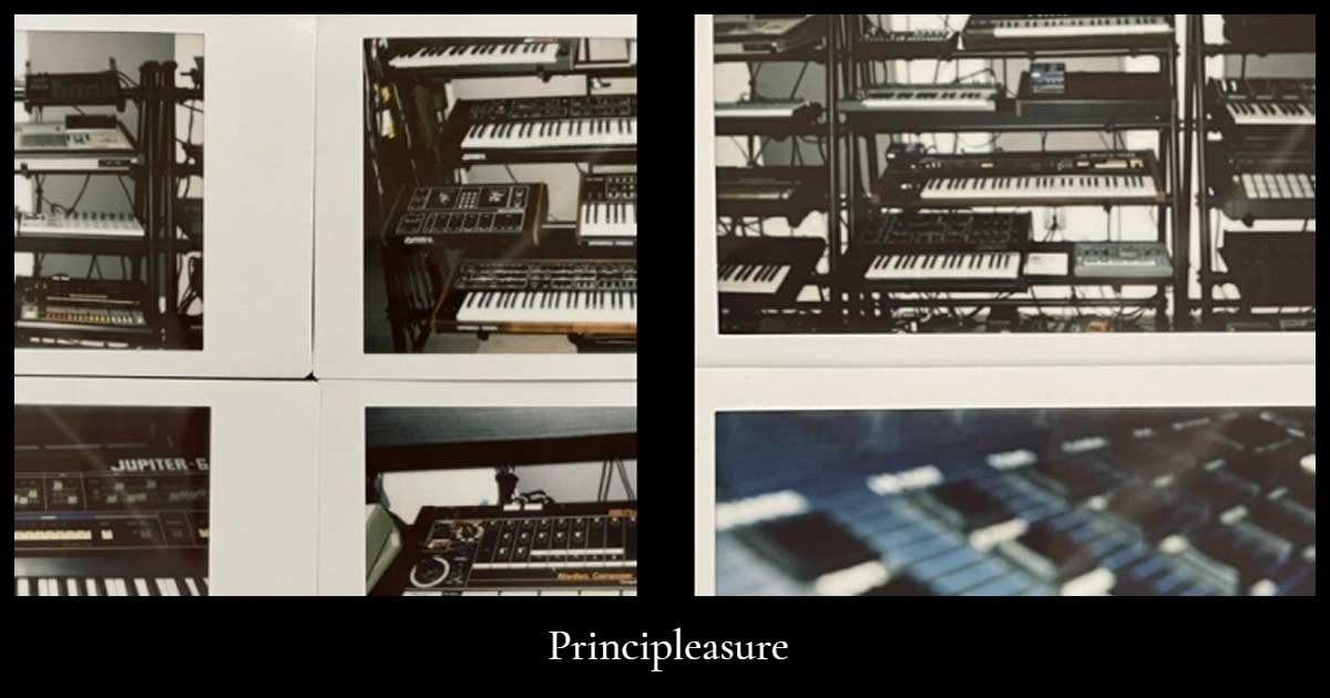 Download Principleasure Synth Samples Now