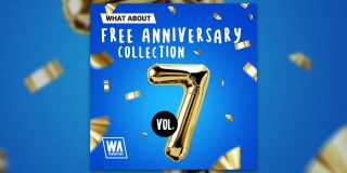 Download Free Anniversary Collection Vol 7 Now